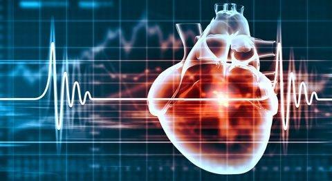 cardiovascular-specialty-small-web